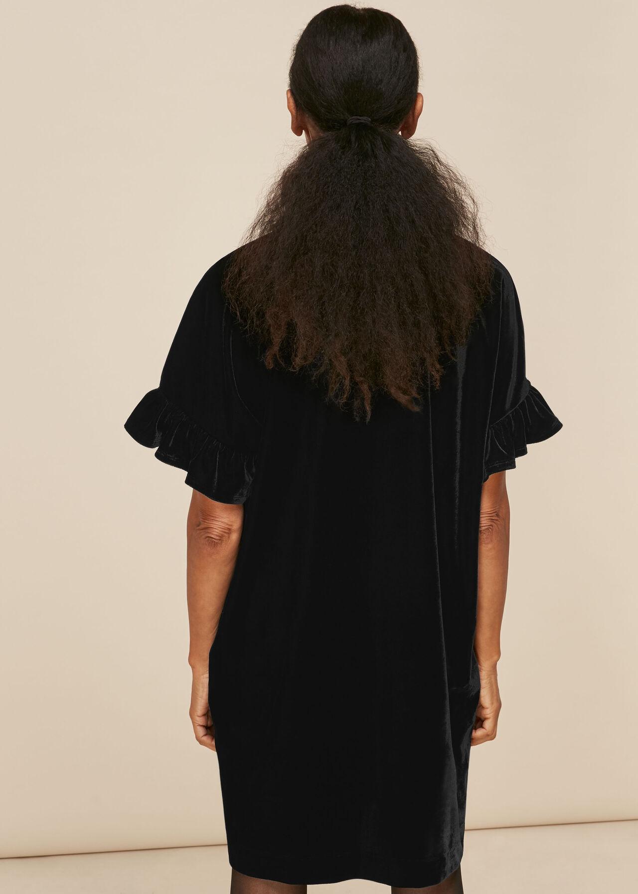 Velvet Frill Sleeve Dress