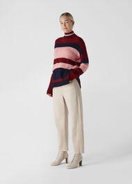Stripe Roll Neck Knit Multicolour